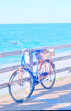 Tappningcykel på havet Royaltyfri Foto