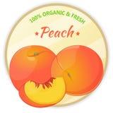 Tappningetikett med persikan som isoleras på vit bakgrund i tecknad filmstil också vektor för coreldrawillustration Frukt och grö royaltyfri fotografi