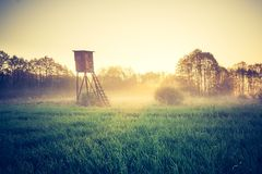 Tappningfoto av det lyftta skinnet på dimmig äng Arkivbild