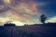 Tappningfoto av stormmoln över fält Fotografering för Bildbyråer