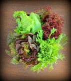 Tappningfoto-gräsplan och röd grönsallat Royaltyfri Fotografi