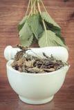 Tappningfoto, gräsplan och torkad citronbalsam i mortel, begrepp av herbalism och alternativ medicin Royaltyfri Bild