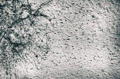 TappningGrunge Gray Background Arkivfoton