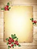 TappningGrunge papper med Cranberries vektor illustrationer