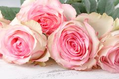 Tappninggrupp av rosa rosor på trätabellen, mjuk fokus royaltyfri bild