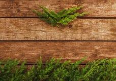 Tappningjulbakgrund - gammalt trä och sörjer filialen arkivbilder