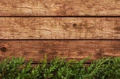Tappningjulbakgrund - gammalt trä och sörjer filialen Royaltyfri Foto