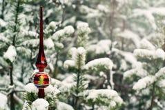 Tappningjultreetop på en bosatt gran i en verklig vinter snö-täckt skog Royaltyfri Fotografi