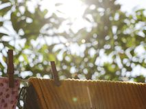 Tappningkläderlinje i trädgård - med kläder royaltyfri foto