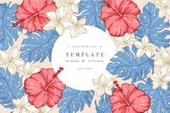 Tappningkort med hibiskus- och plumeriablommor Blom- krans Blommaram för flowershop med etikettdesigner Sommar Royaltyfri Bild