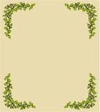 Tappningkort - vektorillustration Royaltyfri Bild