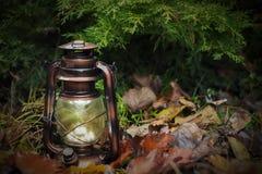 Tappninglampa, sen höst, gamling royaltyfria bilder