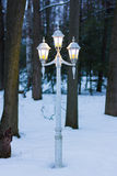 Tappninglampstolpe på en vinternatt i en skog Arkivbilder