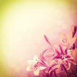 Tappningnaturbakgrund Arkivfoto