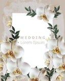 Tappningram med den realistiska orkidéblommavektorn Gifta sig den delikata blom- dekoren för inbjudan Gammal Grungeeffekt illustr royaltyfri illustrationer