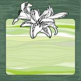 Tappningram med liljor på ett mörker - grön bakgrund Stock Illustrationer