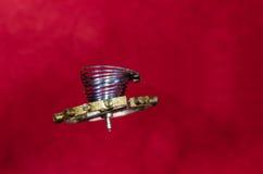 Tappningrovaspiralfjäder inställd i Midair royaltyfri bild