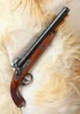 Tappningstor-tråkmåns pistol. Royaltyfri Bild
