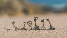 Tappningtangenter på sandstranden arkivfoto