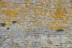 Tappningtegelstenvägg Fotografering för Bildbyråer