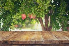 Tappningträbrädetabell framme av det drömlika landskapet för granatäppleträd retro filtrerad bild Arkivbild