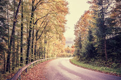 Tappningväg till och med Autumn Forest Arkivbild