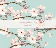 Tappningvattenfärgbakgrund med att blomma Cherry Flowers Arkivfoto