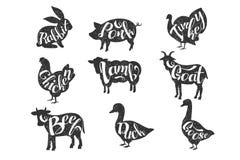 Tappningvektoretiketter med konturer av lantgårddjur med bokstäver Kanin griskött, kalkon, höna, lamm, get, nötkött vektor illustrationer