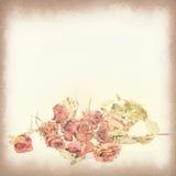 Tappningvykort, vissna rosor och kronblad, mjukt ljus på gammal pappers- texturstilbild Arkivfoton