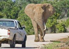 Tappo africano di traffico Immagine Stock Libera da Diritti
