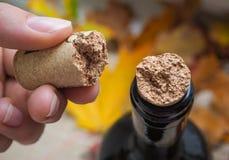Tappo rotto della bottiglia di vino sottragga la priorità bassa fotografia stock