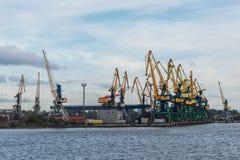 Taps row along the harbor shoreline. Stock Photos