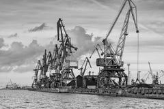 Taps row along the harbor shoreline. Stock Photo