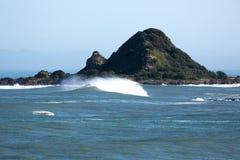 Tapu te Ranga. Island in Island Bay Wellington Stock Photo