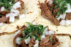 Taquitos mexican style Stock Photos
