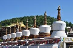 Tar喇嘛寺院 库存照片