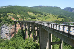 Tara-Brücke Lizenzfreie Stockfotos