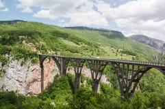Tara Bridge är en konkret ärke- bro över Tara River Arkivfoton