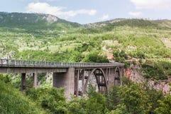Tara Bridge är en konkret ärke- bro över Tara River Arkivfoto