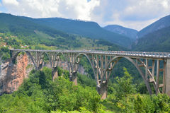 Tara Bridge Arkivfoto