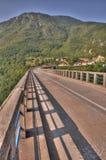 Tara Bridge Royaltyfri Foto