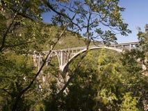 Tara bro över den Tara floden Royaltyfria Foton