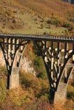 Tara bro, Durmitor nationalpark, Montenegro Royaltyfri Bild