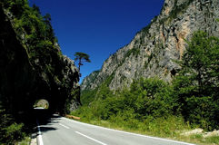 Tara canyon in Montenegro Stock Photo