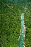 Tara-Fluss, Montenegro Stockfoto