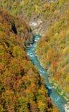 Tara-Flussschlucht Stockfotografie