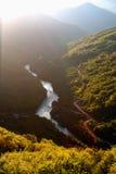 Tara kanjon Fotografering för Bildbyråer