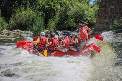 Rafting team , summer extreme water sport. royalty free stock photo