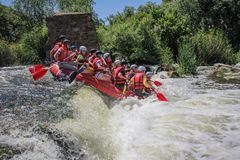 Rafting team , summer extreme water sport. royalty free stock photos