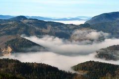 Tara Mountain Royaltyfri Bild